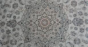 CARPET (5)