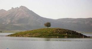 منطقه حفاظت شده ،دریاچه و تالاب ارژن